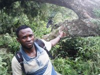 """Acuerdo de Colaboración entre el Proyecto Gran Simio y la ONG de la R.D. del Congo """"Paradis des Primates""""."""