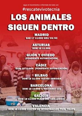 Concentraciones en toda España por los animales maltratados en un laboratorio.