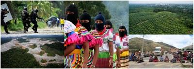 Crimen, poder  e impunidad en los bosques.