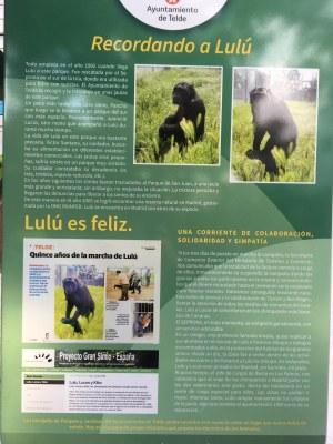 El municipio de Telde de la Isla Gran Canaria instala una placa como recuerdo de Lulú y Lucas rescatados por Proyecto Gran Simio