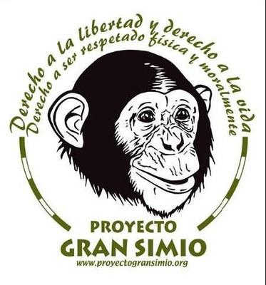 Elegida por Asamblea la nueva Junta Directiva del Proyecto Gran Simio en España.