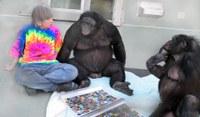 La científica y primatóloga Sue Savage-Rumbaugh, entra a formar parte del Proyecto Gran Simio.