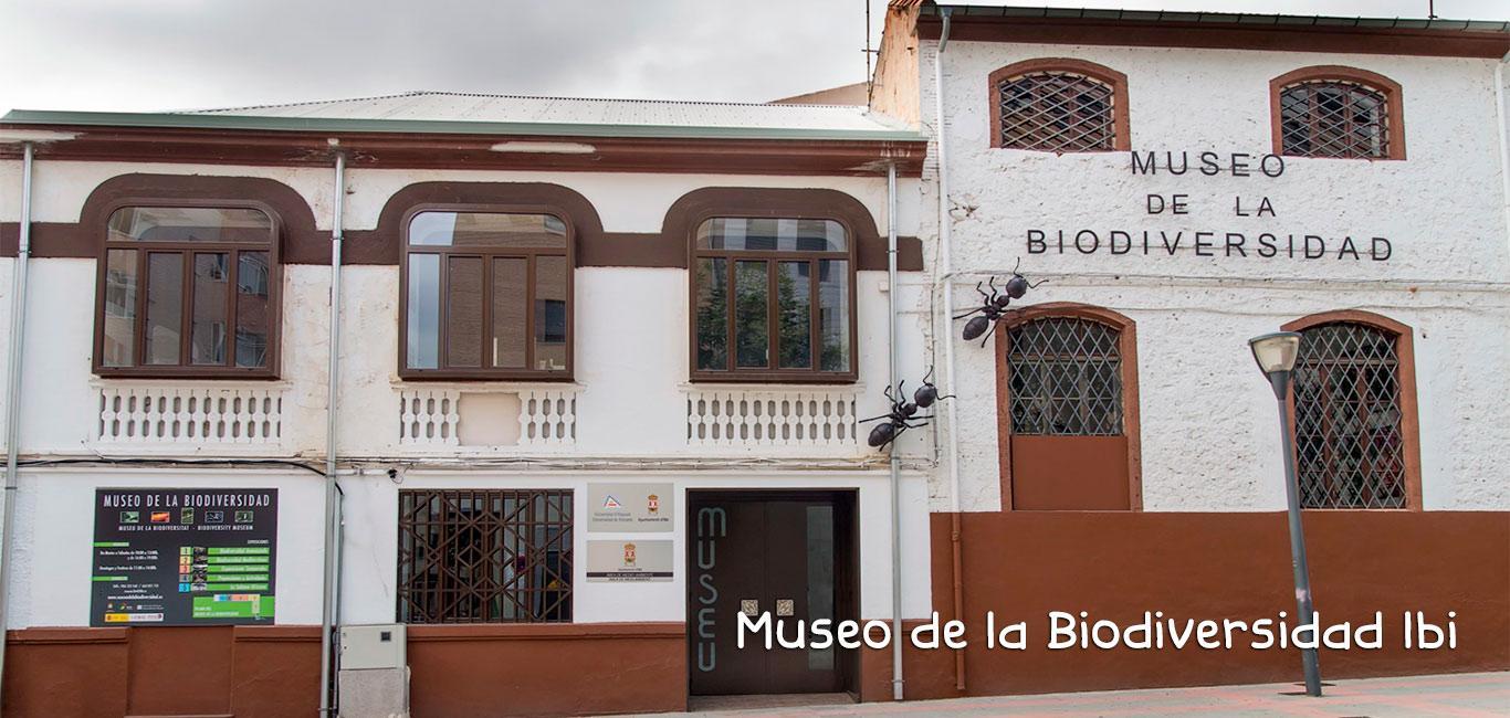 MUSEO DE LA BIODIVERSIDAD.  PROYECTO GRAN SIMIO COLABORA CON EL MUSEO. UN ESPACIO IMPORTANTE PARA VISITAR Y APRENDER LO QUE ES DE TODOS Y DEBEMOS CUIDAR. SITUADO EN IBI (ALICANTE).