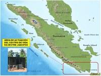 PROYECTO GRAN SIMIO FINANCIA LOS AEROGENERADORES QUE DAN ENERGÍA AL CENTRO DE RESCATE SITUADO AL SUR DE SUMATRA