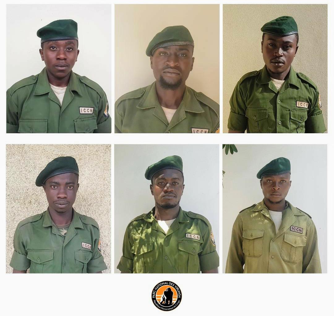 Proyecto Gran Simio lamenta el nuevo asesinato de  seis nuevos Ranger encargados de la vigilancia del Parque Nacional de Virunga.