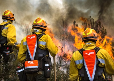 Proyecto Gran Simio y Un bosque para el planeta Tierra, responden preguntas de la Vicepresidencia Cuarta del Gobierno, en relación a un marco legal común para los bomberos forestales.