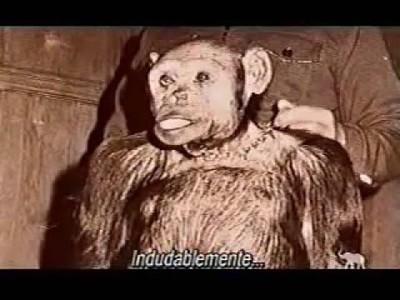 Mono Humano: Oliver - Segunda Parte