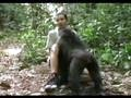 El PGS con los gorilas
